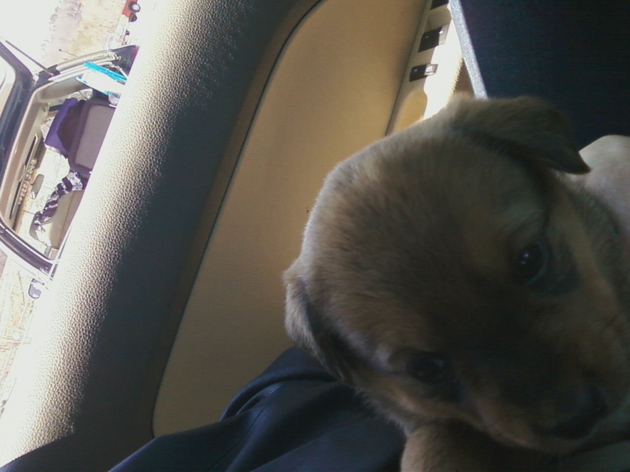 Angel's first ever pic on her way home