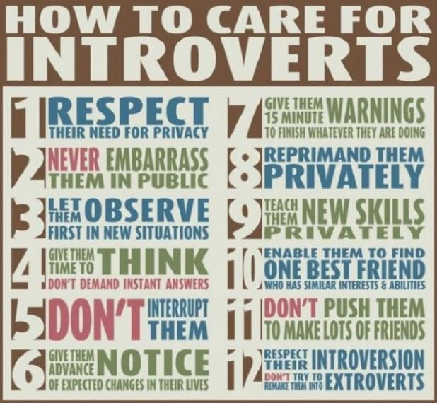 introvert care sheet